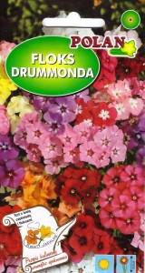 Floks Drummonda mix (Pol 1g)